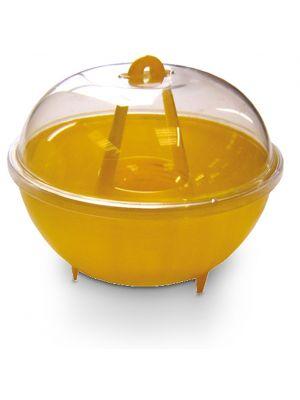 Wasp Dome Trap